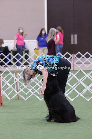 2021 BSCA Obedience Novice B - Part 1