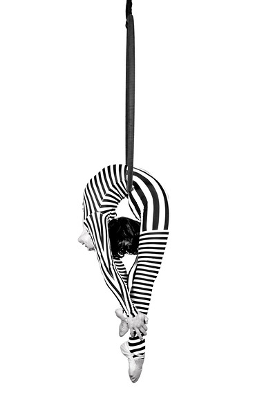 Steven Gregory Photography Acrobat Ring.jpg