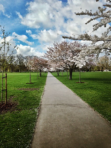 2014-03-22 London - Battersea Park