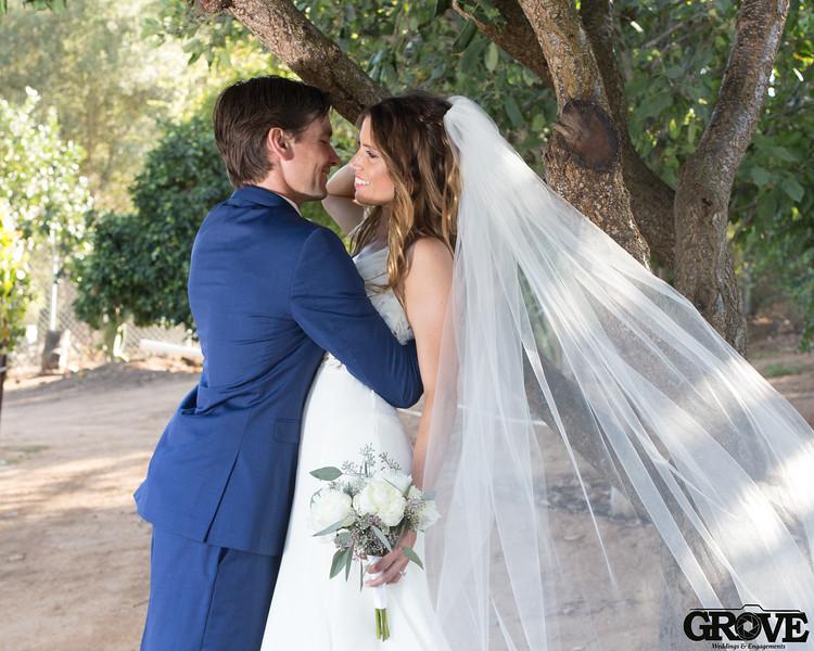 Louis_Yevette_Temecula_Vineyard_Wedding_JGP (70 of 116).jpg