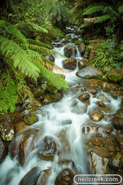 creek-140819-306.jpg