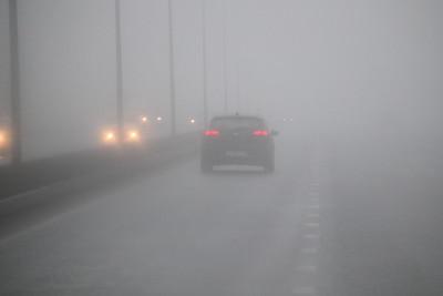 18.11.19 Туман на дороге в Пестрецы (Михаил Захаров)