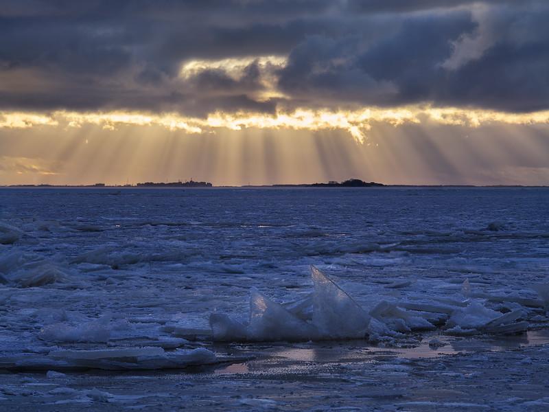 Golden light of winter