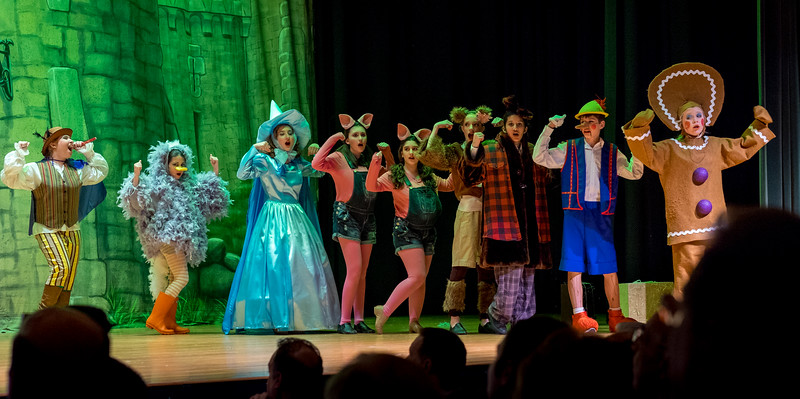2015-03 Shrek Play 2636.jpg