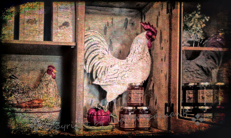 Rooster in the Cupboard - Judith Sparhawk