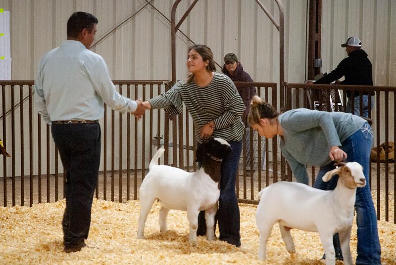 kay_county_showdown_goats_20191207-189.jpg