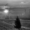 Yellowstone WY  2012
