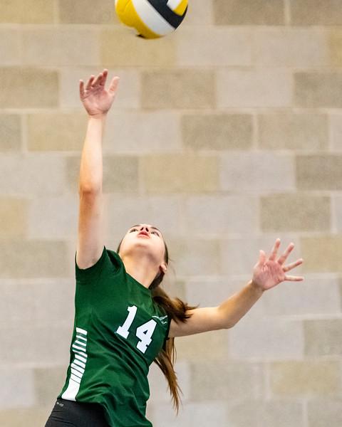2018-Stvenson_Lady's_Volleyball-2.jpg