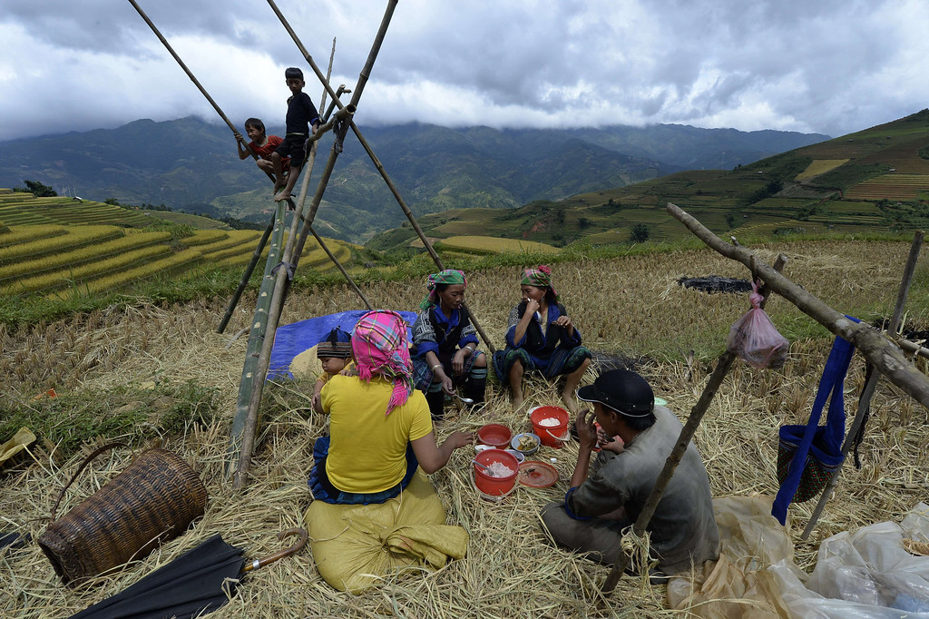 . This picture taken on October 1, 2013 shows a Hmong ethnic hilltribe family having lunch during  a rice harvesting on a terrace rice field in Mu Cang Chai district, in the northern mountainous province of Yen Bai. The local residents, mostly from the Hmong hill tribe, grow rice in the picturesque terrace fields whose age is estimated to hundreds years. Due to hard farming conditions, especially irrigation works, locals produce only one rice crop per year. In recent years a growing numbers of tourists have been attracted by the beautiful landscapes created by the region\'s rice terrace fields.  HOANG DINH NAM/AFP/Getty Images
