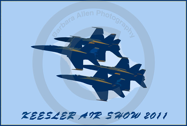 Blue Angels and More!