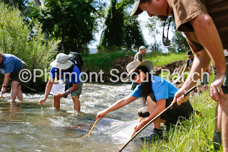 20150728_0127_OutinginScouting_525_Web.jpg