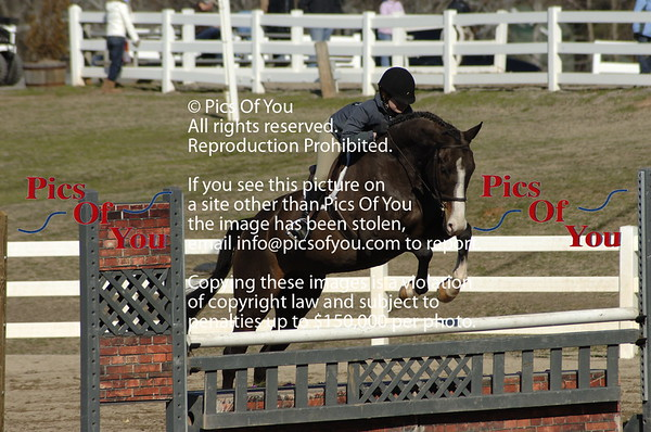2009 Jumper/ Hunter Shows
