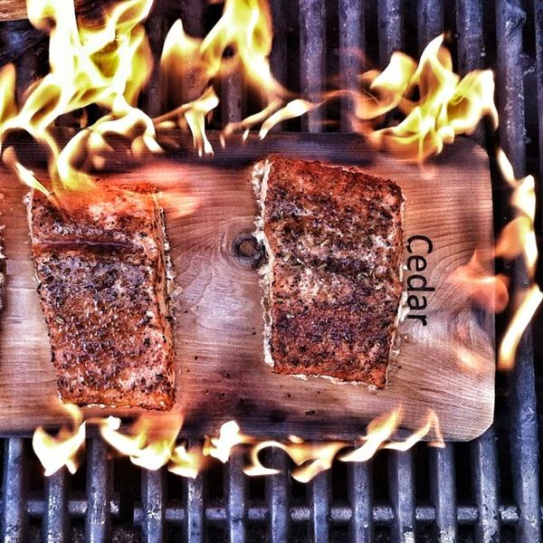 On the table tonite: cedar planked Alaskan Copper River #Sockeye #Salmon #food #foodie #jux #copperriver