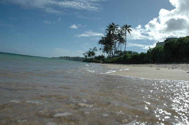 Hawaii - Kahala Beach-101.JPG