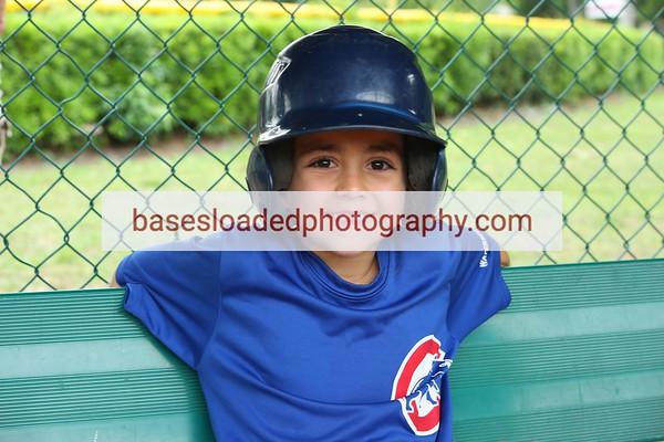 Cubs~Rookies
