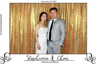 Chris & Stephanie's Wedding 9/15/18