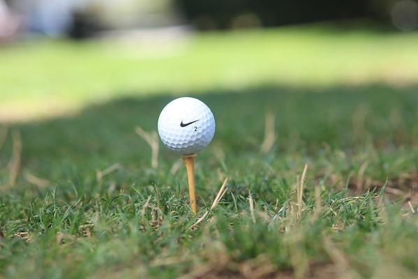 Dom-D-Golf