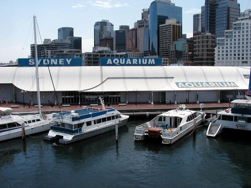 20. Sydney Aquarium.JPG