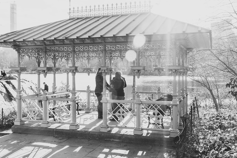Amy & Candastia - Central Park Elopement-2.jpg
