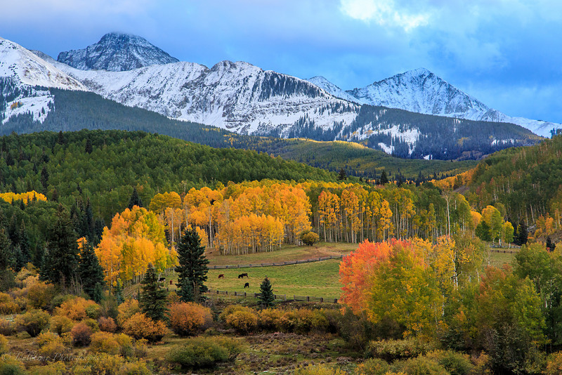 Colorado Color-16.jpg