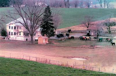 Shank Farm