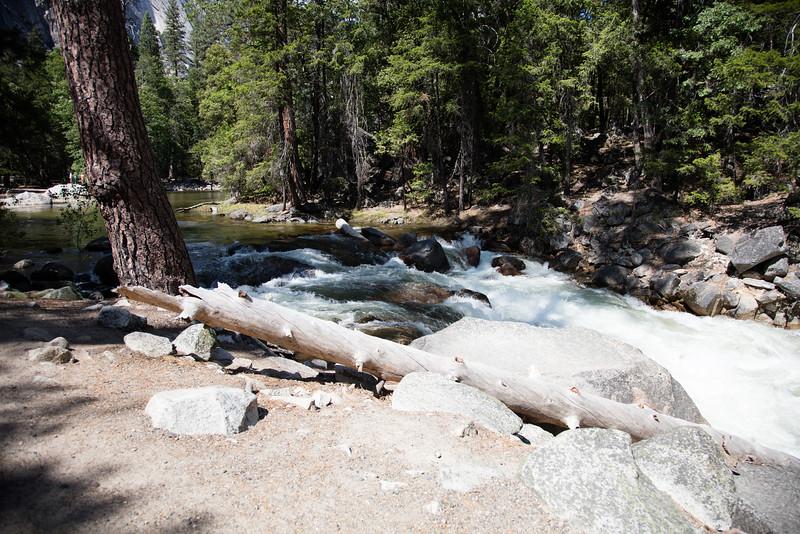 Yosemite_2016_Park-59.jpg