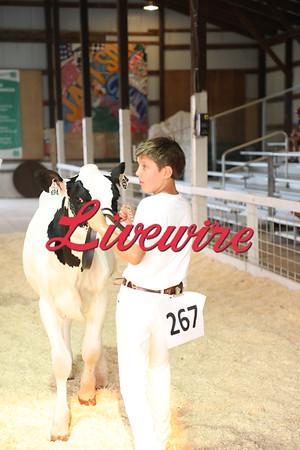 2021 Jackson County Fair - Dairy Show