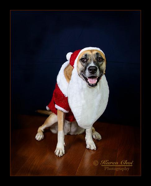 Santa Arya sm.jpg
