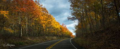 November 2015 Autumn Palette