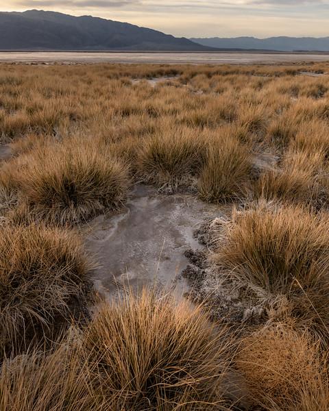 Death Valley Jan-11591.jpg