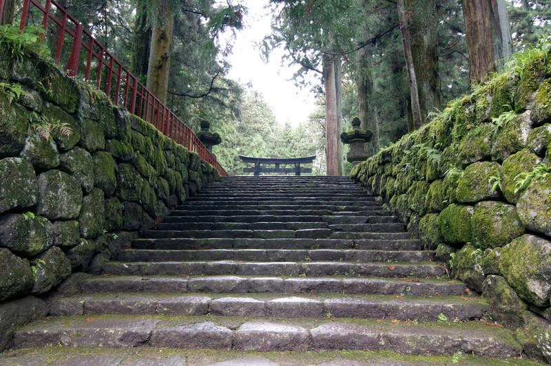 Japan_2010_NAT9003.jpg