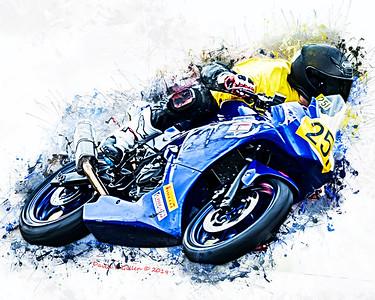 251 Sprint Artwork