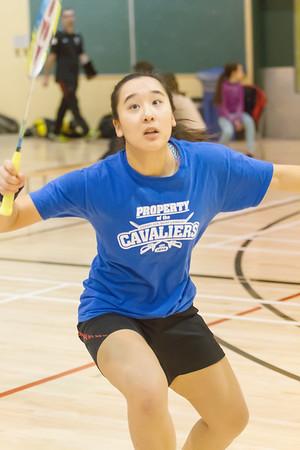 2016-17 Badminton