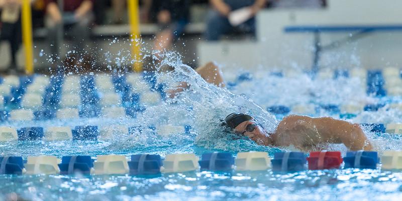 2018_KSMetz_Feb17_SHS Swimming_ State Finals_NIKON D5_5138.jpg