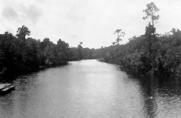 1928-Ribault RIver - Old Six Mile Creek from Moncrief Bridge.jpg