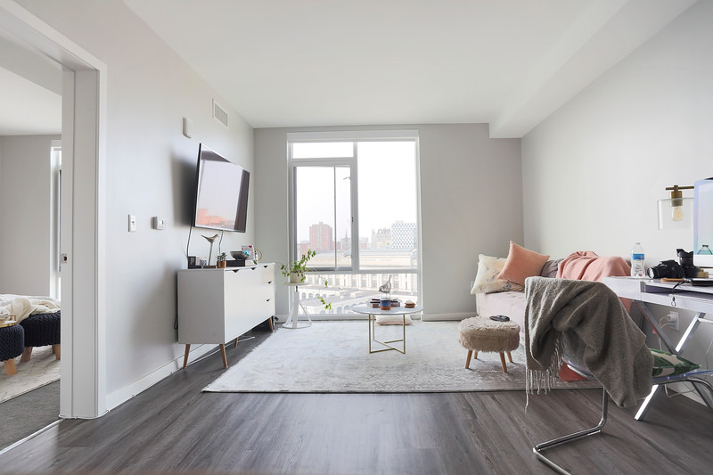 wayfair rug.JPG