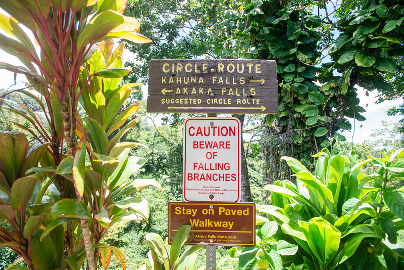 Hawaii2019-169.jpg