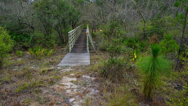 APALACHICOLA Monkey Creek bridge.jpg