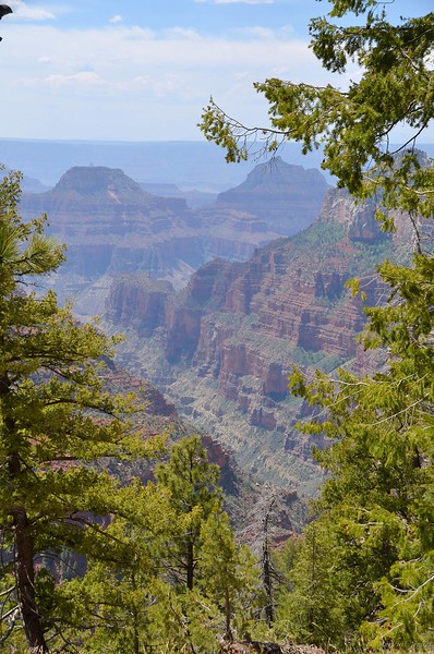 grand_canyon_2014_006.jpg