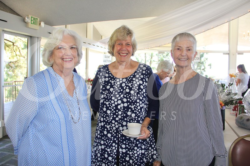 Carole Smith, Patty Compeau and Mary Irwin