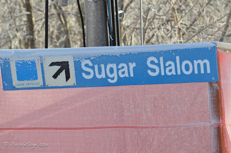 SugarGS-2.jpg