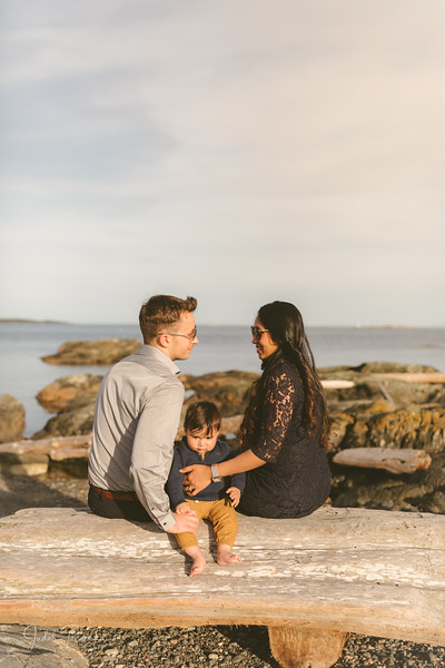 Baby Shower; Engagement Session; Mount Washington HCP Gardens; Chinese Village; Victoria BC Wedding Photographer-163.jpg