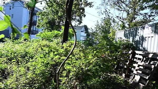 Train Property Land Video
