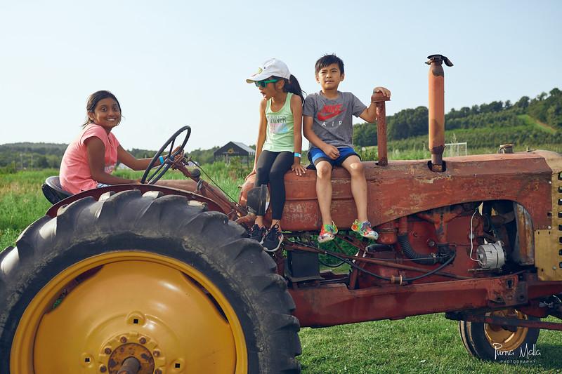 Cider Hill Farm 88.jpg