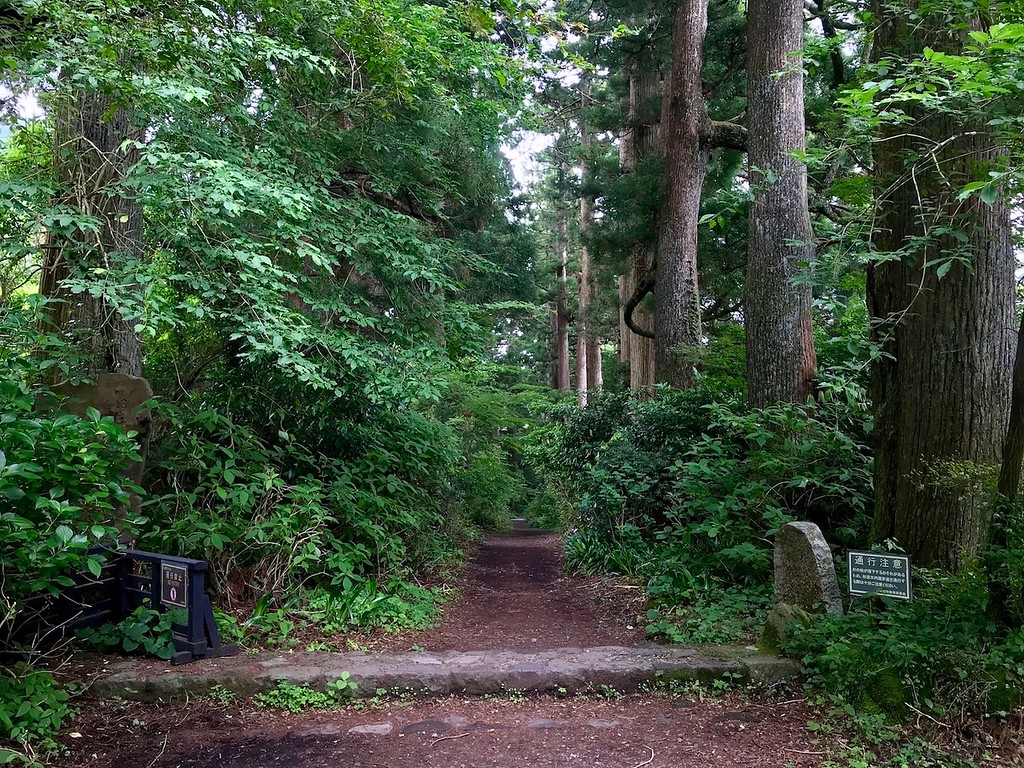 At the start of the Old Tokaido Highway Cedar Avenue.