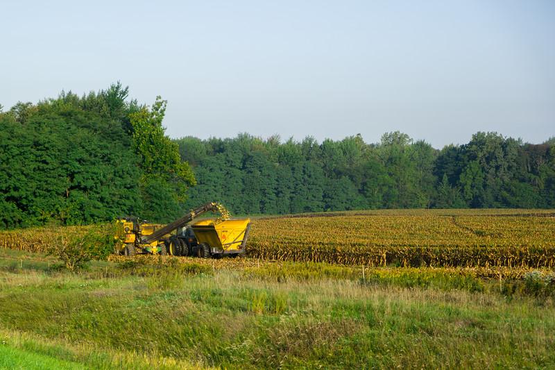 Ohio Corn Harvest
