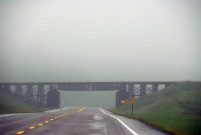 2009 trips