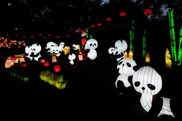 Dallas - Chinese Lantern Festival - 2012