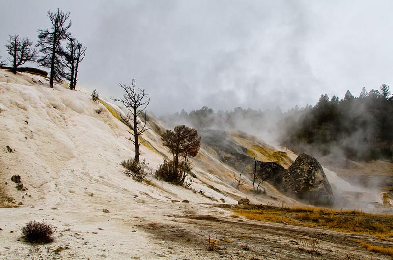 Yellowstone5 009.jpg