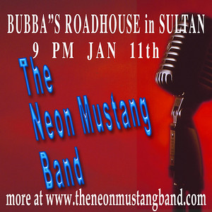 The Neon Mustang Band Promos